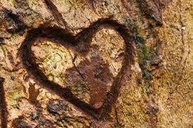 corazon arbol